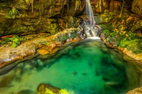 natural-pool-in-the-Isalo-National-Park-in-Madagascar-min