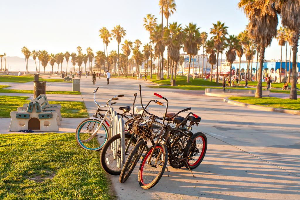 Venice-Beach-in-Los-Angeles-California