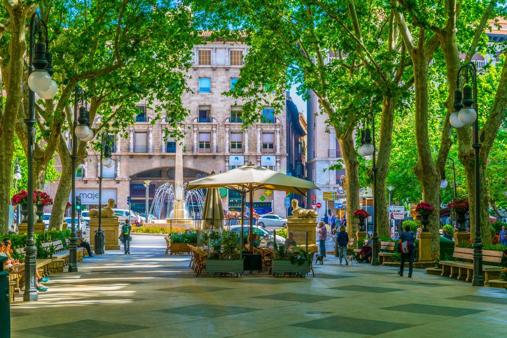 Passeig-del-Born-in-the-historical-center-of-Palma-de-Mallorca